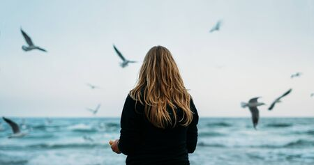 a young woman sits in a blue knitted sweater and jeans by the sea and feeds the seagulls. Windy weather. The view from the back. Banque d'images
