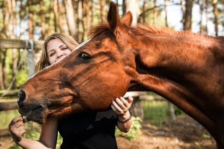 Closeup portrait of a young girl and a horse brown. A woman hugs the horse's face and it reaches for her hand. Friendship between a horse and a man. Confidence. Love and understanding