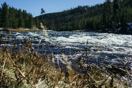 A strong sweat of a mountain river with blue water and white foam runs down. Grass in the foreground and mountains in the background. Blue clear sky. Landscape in Yellowstone Park Standard-Bild