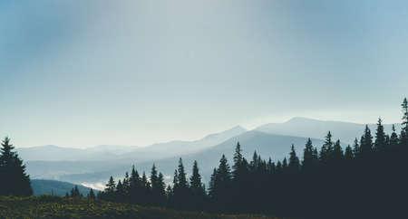 Panorama view morning fog mountain landscape. Standard-Bild
