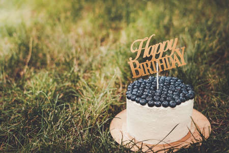Beautiful festive curd childrens cake with blueberries