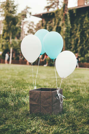 A brown box stands on green grass with tied white and blue balloons.