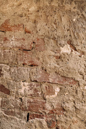 Vertical photo of a brick wall in cement. Texture background