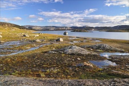 Hardangervidda in summer time, colored river  Norway  Stock Photo