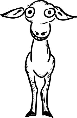 Stupid donkey smiling   Vector