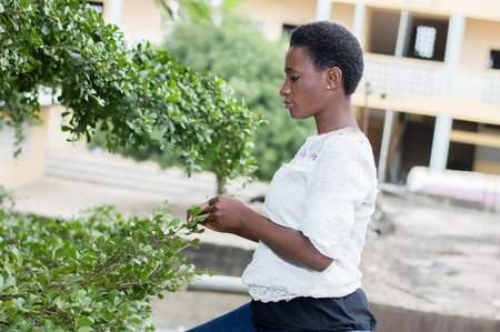 Young woman playing with the leaves of the tree height.