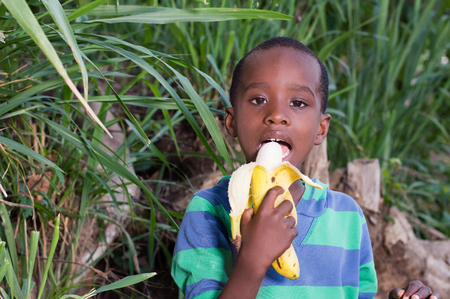 happy little boy eating a banana. Banque d'images - 96822587