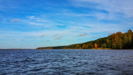 field maple: Fall landscape around the lake