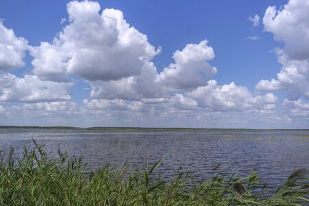 Swampy lake with blue sky and clouds in background