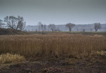Abandoned place landscape, early morning fog. Calm water, misty lake background. Dark silhouettes of trees. River view, water reflections. Cloudy day and mystical atmosphere, november. Awesome nature Reklamní fotografie