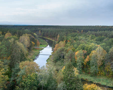 Autumn colorful foliage over the river with beautiful woods in green and yellow color. East Europe.