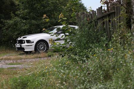 cs: KONSTANTINIVKA, UKRAINE - JULY 28 2015 - sport car Ford Mustang GTCS parked in village on July 28, 2015 in Konstantinivka. Editorial