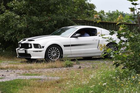mustang gt: KONSTANTINIVKA, UKRAINE - JULY 28 2015 - sport car Ford Mustang GT CS in village on July 28, 2015 in Konstantinivka. Editorial