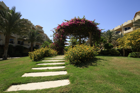 garth: Green beautiful garden with lawn and flowers on the arch in the courtyard of an egyptian hotel