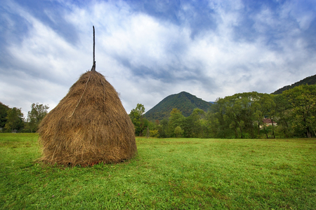 Stack of hay on a green field with a village and a mountain on background