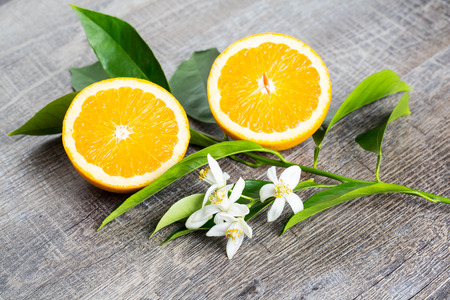 Juicy Orange cut in two parts and  neroli, flowers of orange tree, on rustic wood background. The Orange blossom is the fragrant flower of the Citrus is used in perfume and tea, aphrodisiac. Imagens