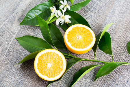 Juicy Orange cut in two parts and neroli, flowers of orange tree, on rustic wood background. The Orange blossom is the fragrant flower of the Citrus is used in perfume and tea, aphrodisiac.