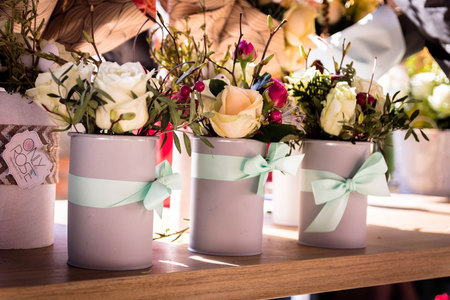 Scenery with roses. Interior colors. Flowers for the interior. Roses in pots. Stock Photo
