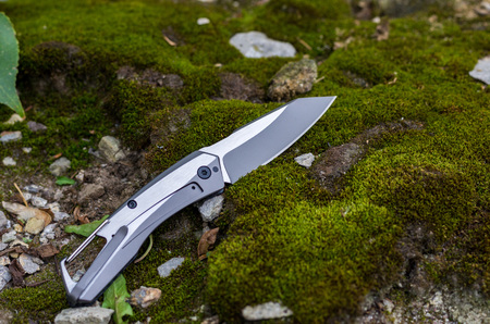 The reverse side of the knife. Knife with an iron handle. Photo on the background of moss.