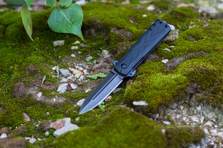 Pocket folding knife for daily carrying. Photo on the nature.