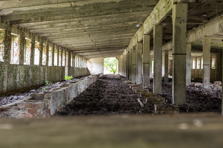 The old abandoned room. Many columns and pillars. Rows and columns.