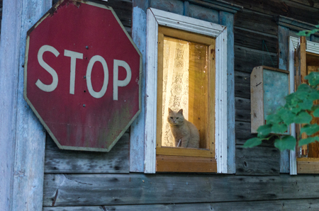 The cat guards the house. Cat and stop sign. No entry.