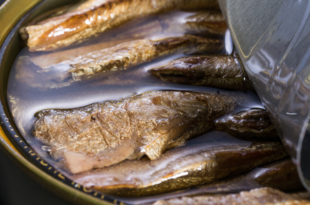 Open can with sprats. Fish in oil. Small fish in a jar. Stock Photo