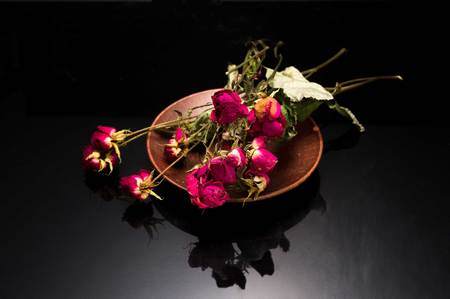 Dried dwarf roses. Cut bouquet of roses. Dead flowers. Banco de Imagens
