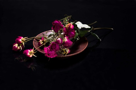 Dried roses on a plate. Herbarium of roses. Dry flowers.