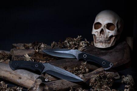 Two large knives. Sculpture of a human skull. Dangerous knives. Deadly weapon. Reklamní fotografie