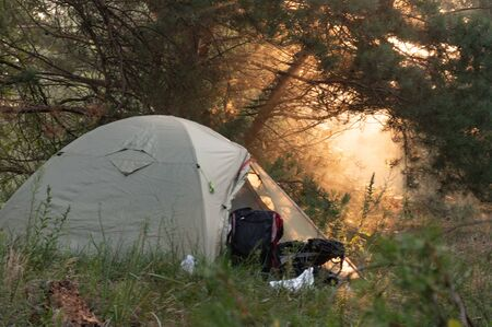 Clearance of the sun. Tourist tent in the forest. Sun clearance through the branches. Standard-Bild
