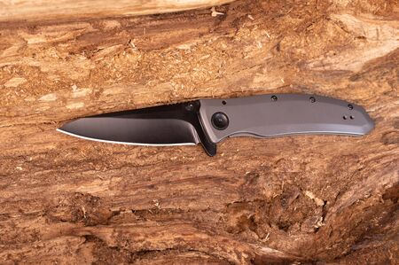 Pocket knife inside a tree. Top view of the knife. Banque d'images