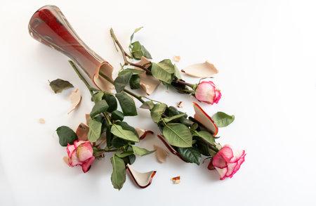 Broken roses in a broken vase. Broken flowers on the floor. Broken vase on the floor. Top.