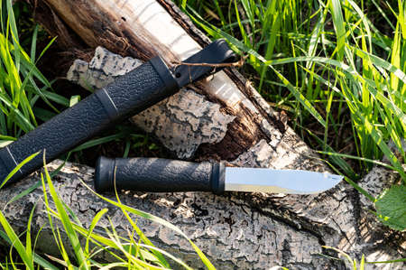 Knife with a fixed blade on the stump. Knife and sheath. Outdoor hunting knife. Top view.