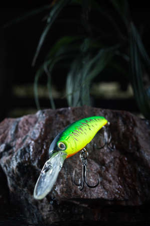Plastic bait for catching predatory fish. Solid fish bait. Green hard lure. Vertical frame.