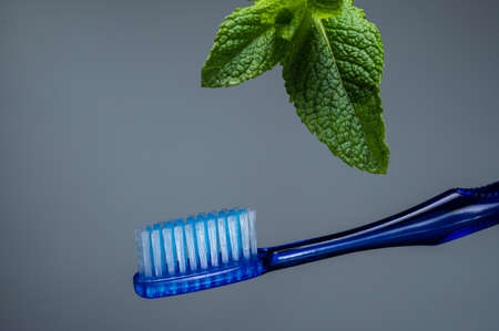 Toothbrush and mint leaf. Toothbrush without paste. Isolate on a gray background. Фото со стока