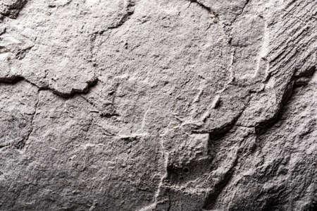 Granite texture. Concrete texture. Gray textured wall.