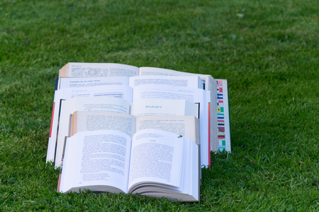 fanned: Open books in the grass