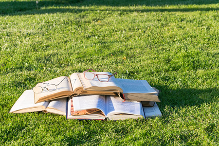 erudition: Open books in the grass