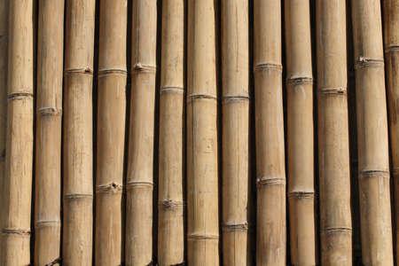 Bamboo wall Stock Photo - 464713
