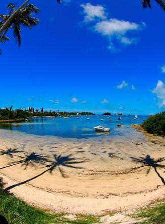 bermuda beach photo