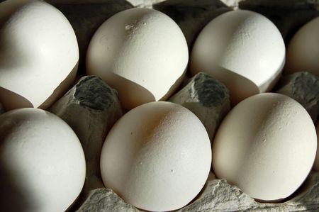 protien: fresh eggs Stock Photo