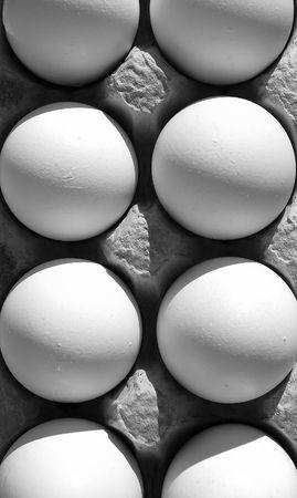 protien: fresh eggs in carton