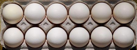dozen: one dozen eggs in carton