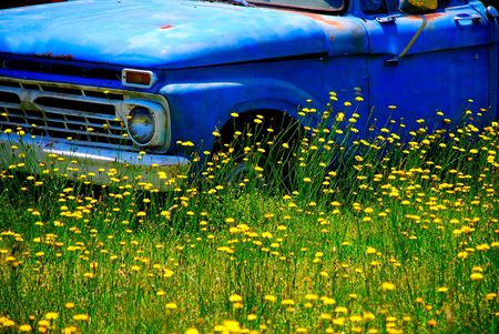 vintage truck with wild flowers