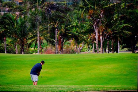 熱帯のゴルフコースでゴルファー