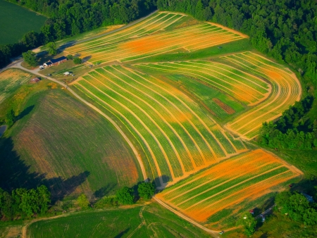 cropland: aerial view of plowed cropland