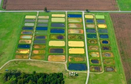 fish farm: agricultural  fish farm aerial view
