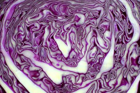 red cabbage Banco de Imagens - 78129403