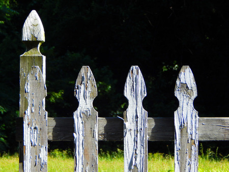 pealing: rustic fence